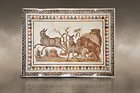 Picture of a Roman mosaics design depicting a lion attacking two onagers or Asiatic wild ass, from the ancient Roman city of Thysdrus. 3rd century AD. El Djem Archaeological Museum, El Djem, Tunisia. Against an art background