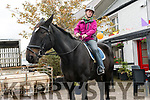 Michelle Leahy Long, Dingle, with her horse Charlie at the Ballinclar Horse & Sheep Fair in Annascaul on Sunday.