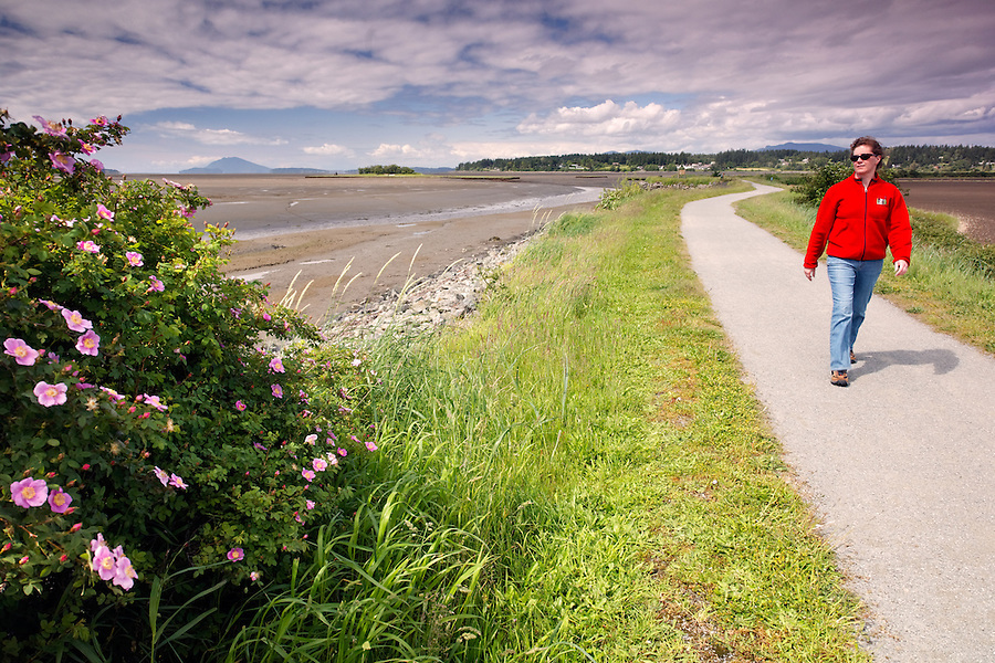 Woman walking on dike trail, Padilla Bay National Estuarine Research Reserve, Skagit County, Washington, USA