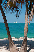 Sailboat betwwen two palm trees on Key West beach