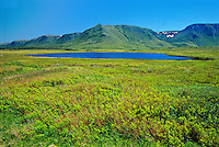 Long Range Mountains<br /> Near Codroy Pond<br /> Newfoundland &amp; Labrador<br /> Canada