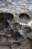 Eroded Rock Face, Gossip Island, San Juan Islands, Washington, US