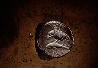 A fourth-century B.C. Sinop coin depicts an eagle clutching a dolphin, a symbol of this port where mountains meet the sea.