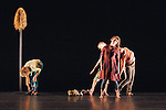 Smith College  MFA Dance Concert.© 2008 JON CRISPIN .Please Credit   Jon Crispin.Jon Crispin   PO Box 958   Amherst, MA 01004.413 256 6453.ALL RIGHTS RESERVED.