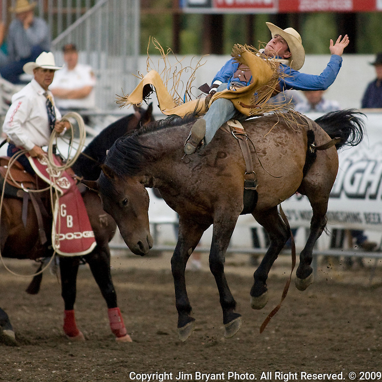 Morgan Forbes, from Kaycee, WY holds onto Hey What during the Saddle Bronc Riding event at the Kitsap County Fair and Stampede  held Aug. 26 to Aug. 30, 2009 in Silverdale, WA.  Jim Bryant Photo. All Right Reserved. © 2009