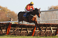 Tayrat ridden by Paul Moloney in jumping action during the Wensum Handicap Hurdle
