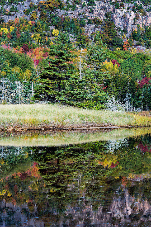 Granite and autumn foilage reflected in salt pond, Acadia NP, Maine, USA