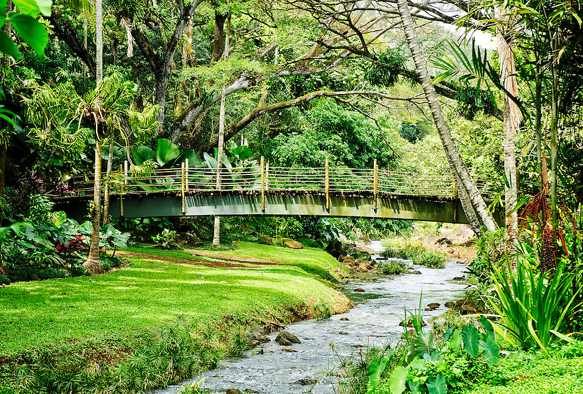 A bamboo bridge crosses a stream at the McBryde Garden, part of the National Tropical Botanical Garden near Koloa on Kauai, Hawaii