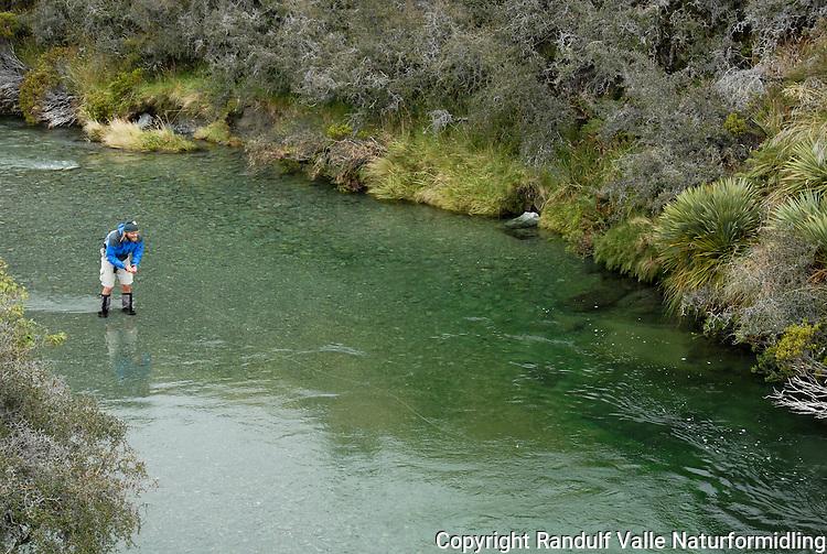 Mann fisker med flue i Mararoa River, Mavora Walkway, New Zealand.  ---- Man flyfishing Mararoa River, Mavora Walkway, New Zealand.
