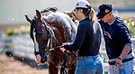 May 15, 2019 : War of Will gets a bath as horses prepare for Preakness Week at Pimlico Race Course in Baltimore, Maryland. Scott Serio/Eclipse Sportswire/CSM