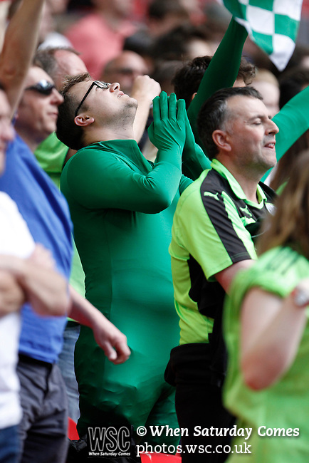 Tranmere Rovers 1 Forest Green Rovers 3, 14/05/2017. Wembley Stadium, Conference play off Final. A Forest Green fan in an all green body suit, during the Vanarama Conference play off Final  between Tranmere Rovers v Forest Green Rovers at the Wembley. Photo by Paul Thompson.