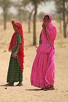 Manvar on the way to Jaisalmer
