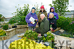 Students Tom Wolf, Margaret Roche, Sylvia Thompson, Lisa O'Connor and Liz Bogan taking part in new classes at the Castleisland Community Garden on Friday