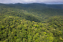 Aerial view of primary lowland tropical rainforest, Osa Peninsula, Costa Rica, May.