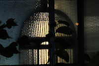 A bird cage reflection at night
