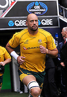 Twickenham, England. Nathan Sharpe of Australia last appearance at Twickenham at the QBE international match between England and Australia for the Cook Cup at Twickenham Stadium on November 10, 2012 in Twickenham, England