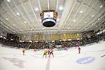 2013 W DI Ice Hockey