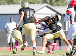 Palos Verdes, CA 10/27/17 - unidentified Morningside player(s) and unidentified Peninsula player(s)in action during the Morningside Monarchs - Palos Verdes Peninsula Varsity football game at Peninsula High School.