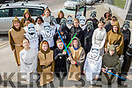 St Olivers NS dressed as Star Wars characters for the Killarney St Patricks Day parade