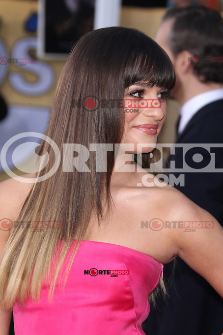 LOS ANGELES, CA - JANUARY 27: Lea Michele at The 19th Annual Screen Actors Guild Awards at the Los Angeles Shrine Exposition Center in Los Angeles, California. January 27, 2013. Credit: MediaPunch Inc.