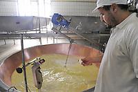 """- Pozzali food industries Trescore Cremasco (Cremona), production of cheese Grana Padano DOP; the """"cheese specialist"""" controls the temperature of milk....- Pozzali Industrie Alimentari a Trescore Cremasco (Cremona), produzione del formaggio Grana Padano DOP; il """"casaro"""" controlla la temperatura del latte......"""