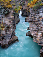 Narow canyon at Athebasca Falls. Jasper National Park, Alberta, Canada