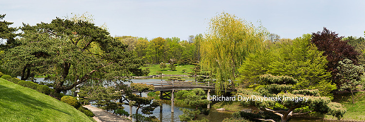63821-22608 Japanese garden and bridge in spring, Chicago Botanic Garden, Glencoe, IL
