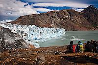 Glacier Viedma, in Parque Nacionales los Glaciares, Argentina.