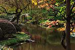 Japanese Garden at UW Arboretum