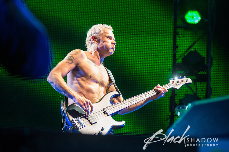Red Hot Chilli Peppers performing at The Big Day Out, Melbourne, Flemington Racecourse, 26 January 2013
