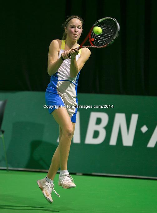 09-02-14, Netherlands,Rotterdam,Ahoy, ABNAMROWTT,, , <br /> Photo:Tennisimages/Henk Koster