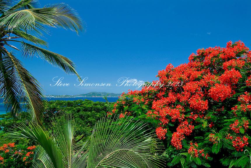 Cruz Bay looking towards St Thomas<br /> St. John<br /> U.S. Virgin Islands