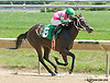 Lex's Thats Who winning at Delaware Park on 7/18/13
