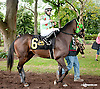 Blue Distortion before The First State Dash at Delaware Park on 9/14/13