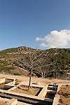 Israel, the Upper Galilee. Ein Garna overlooking Wadi Shfanim