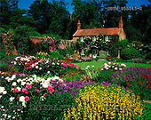 Tom Mackie, FLOWERS, photos, Gardener's Cottage, Hoveton Hall, Norfolk, England, GBTM955545-2,#F# Garten, jardín