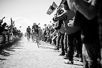 Tom Boonen (BEL/Etixx-QuickStep) cheered on in sector 6A: Sysoing to Bourghelles (1.3km)<br /> <br /> 114th Paris-Roubaix 2016