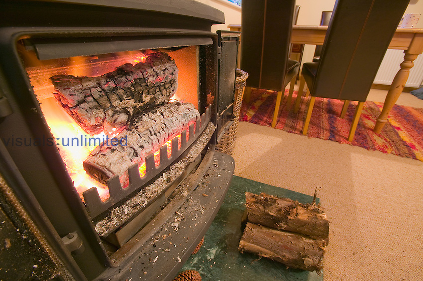 Wood stove for home heating