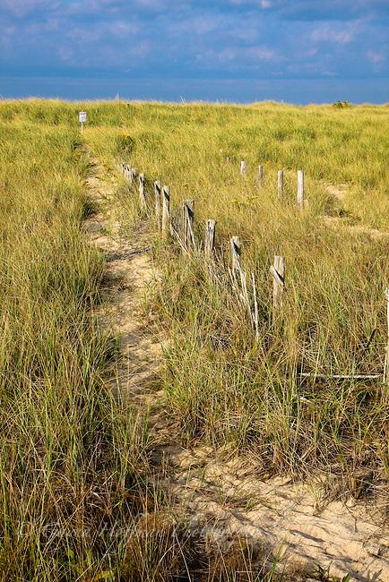 Cape Cod National Seashore, Provincetown, MA
