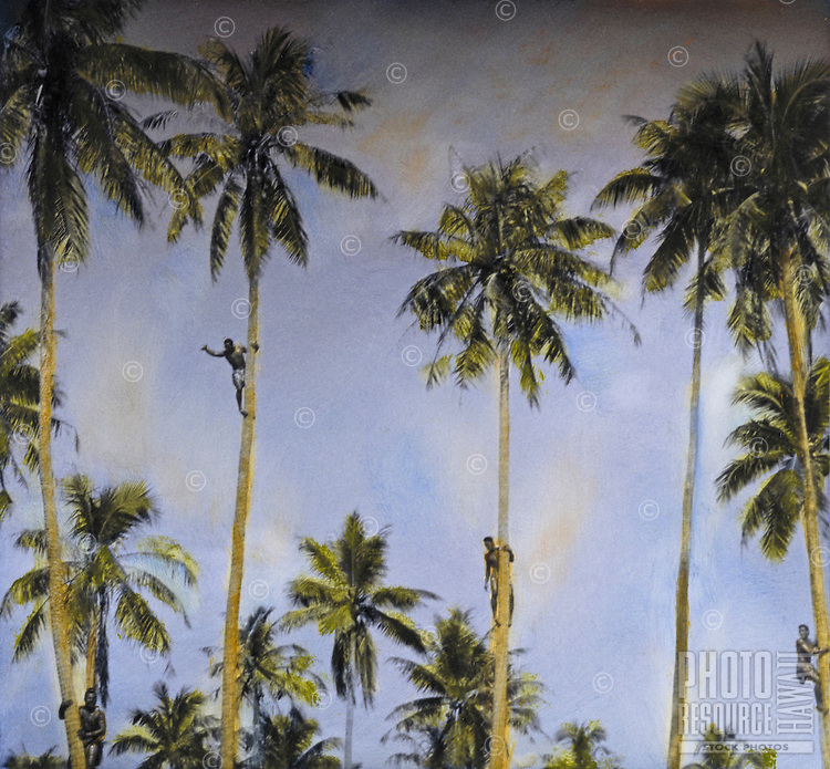 Handtinted tropical scene with men climbing coconut palm trees