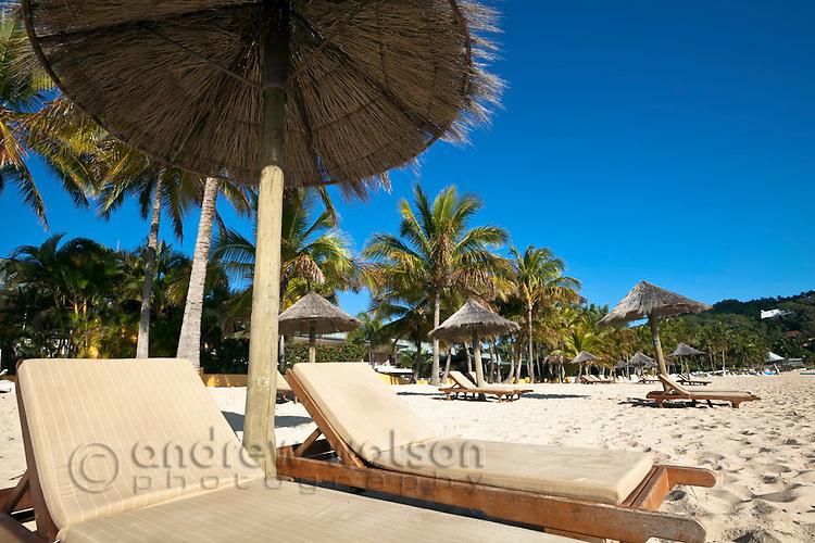 Sun lounges and beach umbrellas on Catseye Beach.  Hamilton Island, Whitsundays, Queensland, Australia