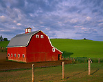 Whitman County, WA      <br /> Red barn with gambrel roof under morning clouds with rolling hills of the Palouse in the background near Oakesdale, WA