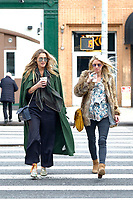 www.acepixs.com<br /> <br /> November 14 2017, New York City<br /> <br /> Pregnant Nicky Hilton walks in the East Village with a friend on November 14 2017 in New York City<br /> <br /> By Line: Curtis Means/ACE Pictures<br /> <br /> <br /> ACE Pictures Inc<br /> Tel: 6467670430<br /> Email: info@acepixs.com<br /> www.acepixs.com