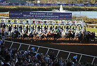 DEL MAR, CA - NOVEMBER 04: The field breaks from the gateduring the Sentient Jet Breeders' Cup Juvenile race on Day 2 of the 2017 Breeders' Cup World Championships at Del Mar Racing Club on November 4, 2017 in Del Mar, California. (Photo by Carson Denis/Eclipse Sportswire/Breeders Cup)