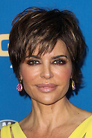 CENTURY CITY, CA - JANUARY 25: Lisa Rinna at the 66th Annual Directors Guild Of America Awards held at the Hyatt Regency Century Plaza on January 25, 2014 in Century City, California. (Photo by Xavier Collin/Celebrity Monitor)