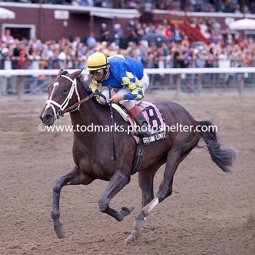 Position Limit wins the Adirondack, though her season was cut short by injury.