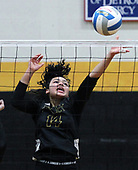 Lydia Capaldi, Bishop Foley Catholic, taps the ball back over the net during regional semifinal volleyball action against Wixom St. Cathrine during regional semifinal volleyball action at Foley Tuesday, Nov. 7, 2017. St. Catherine defeated Foley 3-1. (For The Oakland Press / LARRY McKEE)