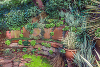 Stone bench built into hillside;Roger Raiche Berkeley Maybeck Cottage garden