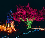 "Tacoma, WA<br /> Overview of holiday ""Zoo Lights"" display at the Point Defiance Zoo and Aquarium"