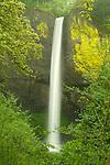 Latourell Falls. Oregon.